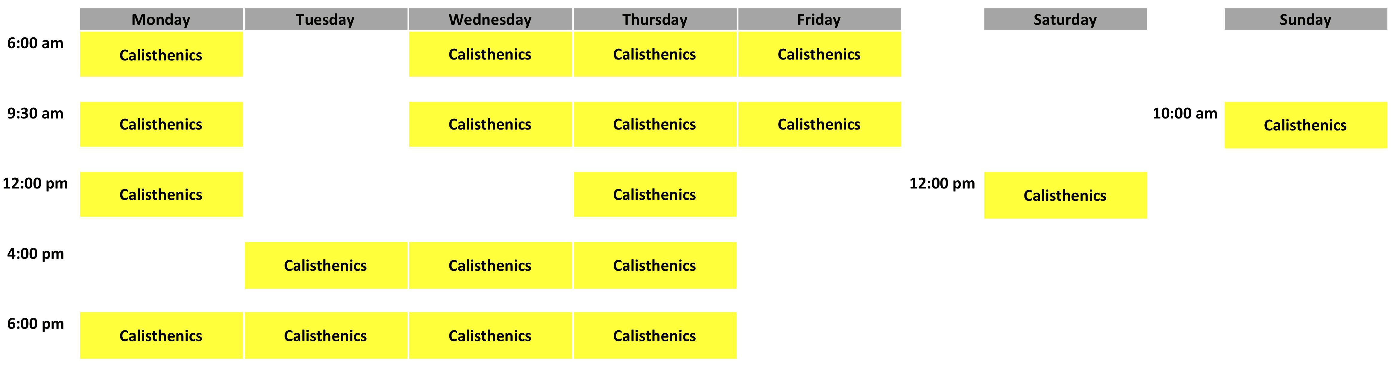 Calisthenics Schedule - April 2019